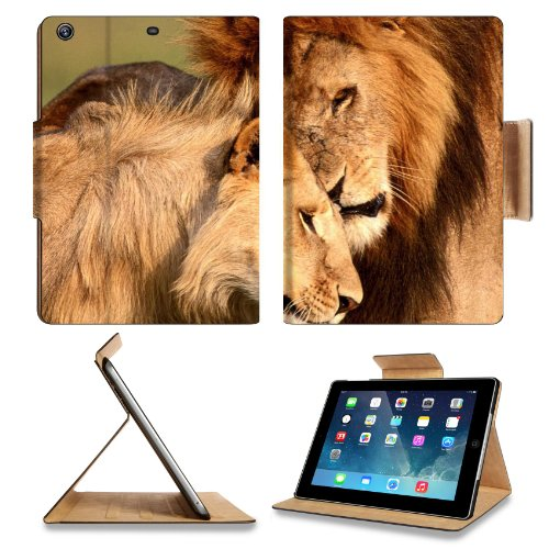 Animal Wildlife Lion Mane King Africa Predator Love Cat Apple Ipad Air Retina Display 5Th Flip Case Stand Smart Magnetic Cover Open Ports Customized Made To Order Support Ready Premium Deluxe Pu Leather 9 7/16 Inch (240Mm) X 7 5/16 Inch (185Mm) X 5/8 Inch front-251363