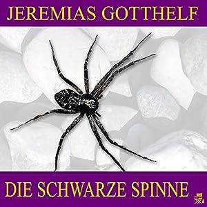 Die schwarze Spinne Hörbuch