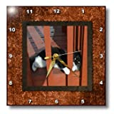 dpp_180852_1 Beverly Turner Cat Photography - Sassy and Adorable Little Black and White Kitten on the Patio - Wall Clocks - 10x10 Wall Clock