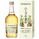 【2本セット】ハーブの恵み養命酒700ml×2本