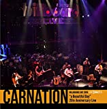 "Carnation Billboard Live 2015 [LIVE DIRECT]""a Beautiful Day"" 20th Anniversary Live"