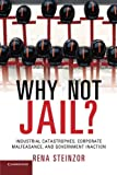 img - for Why Not Jail?: Industrial Catastrophes, Corporate Malfeasance, and Government Inaction book / textbook / text book