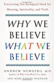 img - for Why We Believe What We Believe: Uncovering Our Biological Need for Meaning, Spirituality, and Truth book / textbook / text book