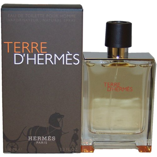 Hermes Terre D'Hermes Eau De Toilette Spray for Men 100ml