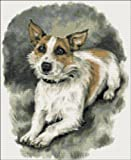 Wire haired Jack Russell cross stitch kit