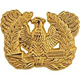 U.S. Army Warrant Officer Candidate Pin 1""