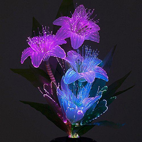 fiberlite-lily