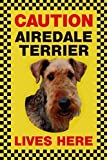 CAUTION AIREDALE TERRIER LIVES HERE サインボート:エアデールテリア 写真 画像 英語 看板 Made in U.K [並行輸入品]