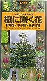 樹に咲く花—合弁花・単子葉・裸子植物 (山渓ハンディ図鑑)