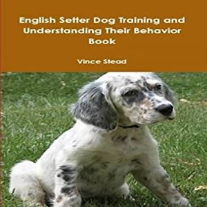 English Setter Dog Training and Understanding Their Behavior | [Vince Stead]