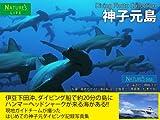 神子元島 ダイビング写真集 〜ハンマーヘッドシャークが来る海 記録写真集〜 電子ブック水中写真集