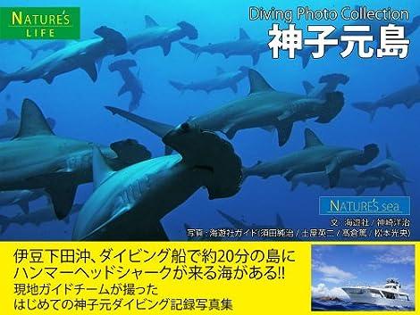神子元島 ダイビング写真集 ~ハンマーヘッドシャークが来る海 記録写真集~ (NATURE\'s Sea)
