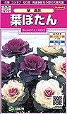 サカタのタネ 実咲花5898 葉ぼたん 傘混合 00905898