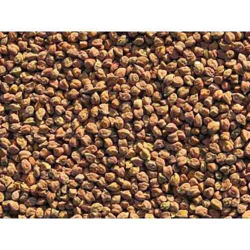 Organic Kala Chana Small Chickpeas 1Kg - Usda Certified (Morarka)