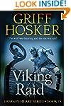 Viking Raid (Dragon Heart Book 9)