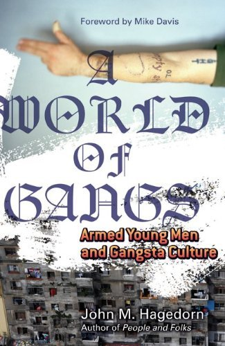 World of Gangs: Armed Young Men and Gangsta Culture (Globalization & Community Series)