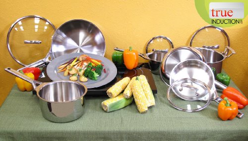 True Induction Double Burner with Stainless Steel Multi-ply True Induction Gourmet Cookware Set (True Induction 2 Burner compare prices)