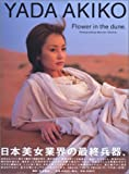 矢田亜希子写真集/YADA AKIKO Flower in the dune.
