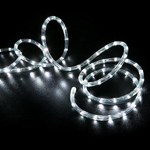 Led Rope Lights On Amazon: WYZworks 10' 25' 50' 100' 150' 300' Ft (300' Feet) Cool
