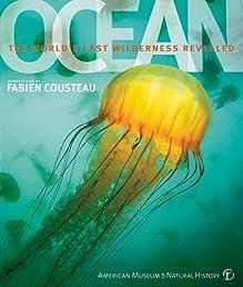 Ocean (American Museum of Natural History)