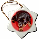 3dRose orn_17683_1 Dog Rottweiler Puppy Porcelain Snowflake Ornament, 3-Inch