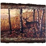 Walnut Hollow InGrained Art with Bark Edge, Whitetail Buck