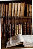 Image de Die Bibliothek: Kulturgeschichte und Architektur von der Antike bis heute