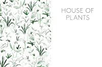House of Plants: Living with Succulents, Air Plants and Cacti by Frances Lincoln