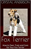 Fox Terrier: How to Own, Train and Care for Your Fox Terrier