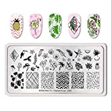 Summer Fruit Nail Art Stamping Template Tropical Punch Pattern Rectangle Image Plate Stamping Polish Needed BP-T-L002 (Color: BP-T-L002)
