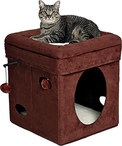 Curious Cat Cube, Cat House / Cat Condo (Cat Houses & Condos compare prices)