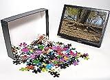 Photo Jigsaw Puzzle of Adult Komodo drag...