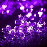 InnooTech 50er LED Solar Lichterkette Blumen Garten Außen Lila 5