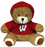 NCAA Wisconsin Badgers Plush Bear with Logo Hoodie, Team Color