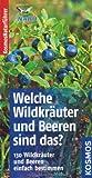 Welche Wildkräuter und Beeren sind das?: 130 Wildkräuter und Beeren einfach bestimmen. Basic