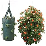 Nutley's Hanging Tomato Growbag