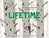img - for Lifetime: The Amazing Numbers in Animal Lives book / textbook / text book
