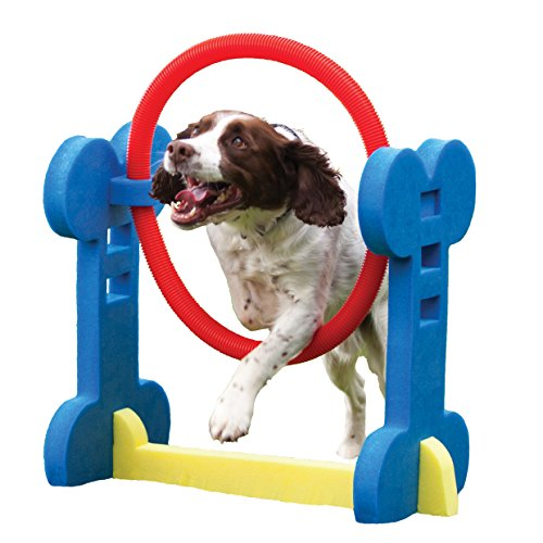 Agility-Hoop-Dog-play-exercise-toy