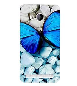 PrintVisa Animal Butterfly Colorful 3D Hard Polycarbonate Designer Back Case Cover for VivoXshot