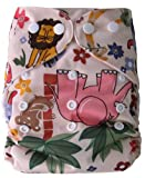 Famicheer Patterned Cloth Nappy (plus 2 inserts) - Animals