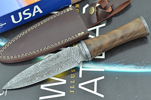 Unforgettable Christmas Gift by ColdLand Knives | Handmade Damascus Steel 10.50 Inches Dagger Hunting Knife with Exotic African Ebony Wood