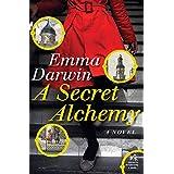 A Secret Alchemyby Emma Darwin