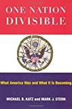 One Nation Divisible: What America Wants and What It Is Becoming