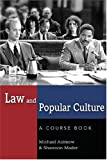 Law and Popular Culture (Politics, Media, and Popular Culture)
