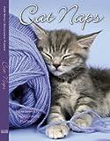 Cat Naps 2009 Weekly Engagement Planner (Calendar)
