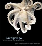 Archipelago: Portraits of Life in the Worlds Most Remote Island Sanctuary by Liittschwager, David, Middleton, Susan (2005) Hardcover