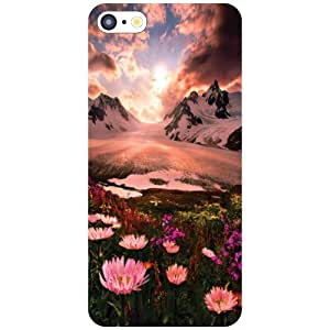 Printland Floric Phone Cover For Apple iPhone 5C