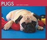 Pugs 2009 Boxed Calendar