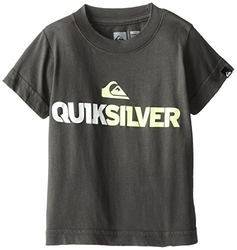 Quiksilver Baby-Boys Infant Mountain And Wave Tee Grey, Gunsmoke, 24 Months front-638404