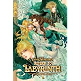 Return to Labyrinth Volume 4 (Jim Henson's Return to Labyrinth)by Jake Forbes